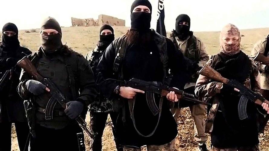 منزل بورقيبة: الإطاحة بإرهابي عائد من بؤر التوتر ومتهم بالتأمر على أمن الدولة