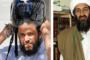 خطير- بن علي رفض قبوله منذ عام 2006، ألمانيا تنجح في ترحيل الحارس الشخصي لبن لادن لتونس