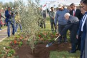 رئيس الجمهورية يغرس شجرة زيتون ويعرب عن أمله في أن تكون السنة الفلاحيّة سنة متميّزة