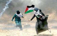 لم أنس فلسطين !!