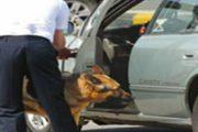 القبض على عون أمن يهرب في المخدّرات على متن سيارته المرسيدس