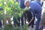 أريانة: وزير أملاك الدولة والشؤون العقارية يشرف على الاحتفال بعيد الشجرة