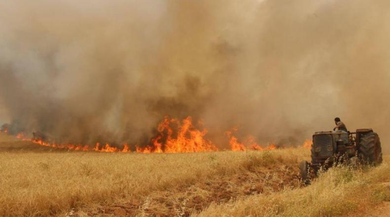 صورة التذكير بعقوبات الحرائق في الغابات والمحاصيل الزراعية