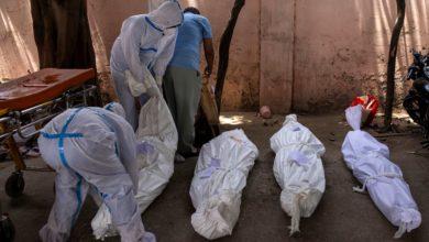 """صورة تجاوز عدد المصابين بفيروس """"كورونا"""" على مستوى العالم 241 مليون نسمة"""